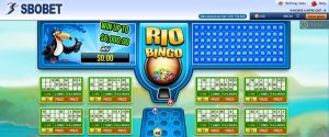 Register Bingo Sbobet